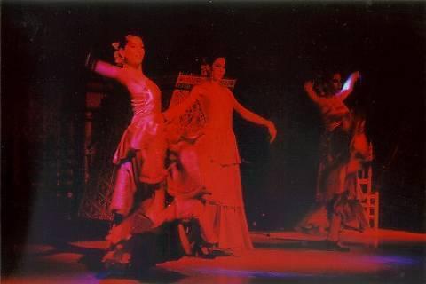 FOTKA - Hrisne Flamenco