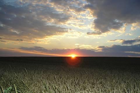 FOTKA - slunce