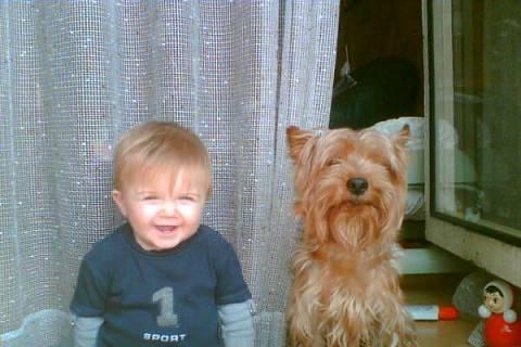 FOTKA - Miriam a její pes obranář Gino