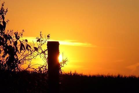 FOTKA - Západ sluníčka, podzim 06