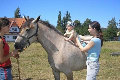 FOTKA - Lukášek na koni