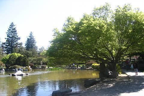 FOTKA - Cinsky park 2