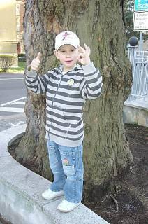 FOTKA - Daneček u stromu