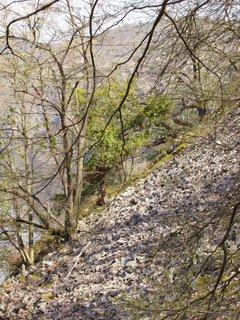 FOTKA - suťovisko nad Slapskou přehradou