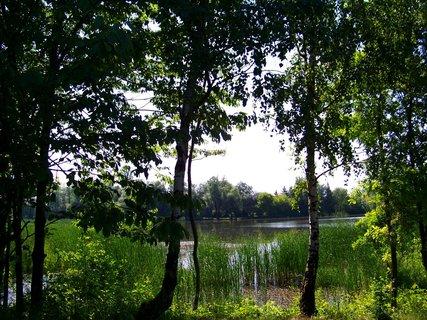FOTKA - vyjížďka na kole 22.5.11, rybník ve Vestci