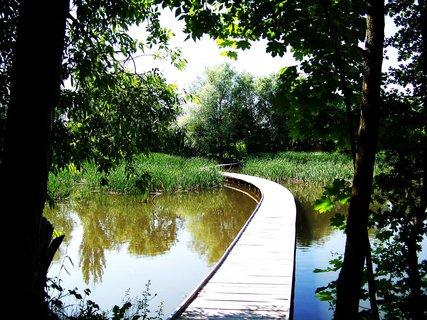 FOTKA - vyjížďka na kole 22.5.11, nově postavená lávka přes rybník