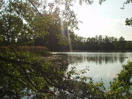 FOTKA - U rybníku