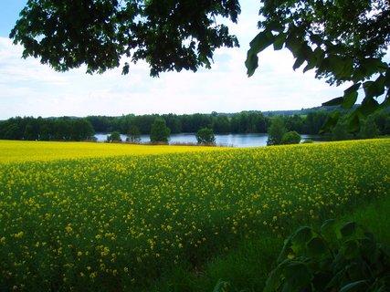 FOTKA - květnová krajina 3