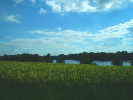 FOTKA - květnová krajina 6