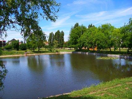 FOTKA - dnešní cyklistika, 29.5., rybník Ohrada...