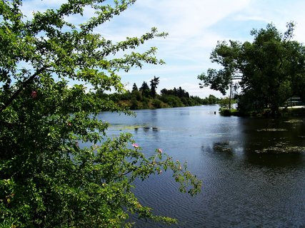FOTKA - dnešní cyklistika, 29.5., rybník Šeberák