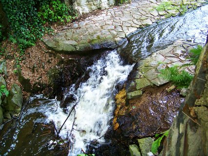 FOTKA - dnešní cyklistika, 29.5., potůček z rybníka