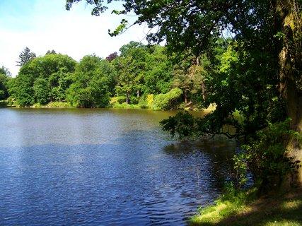 FOTKA - dnešní cyklistika, 29.5., průhonický rybník...