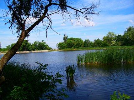 FOTKA - včerejší cyklistika, rybník....