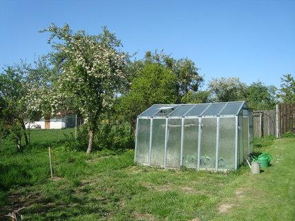 FOTKA - skleník 1