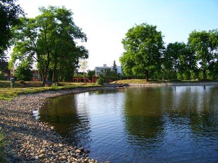 FOTKA - rybník Ohrada, u břehu....