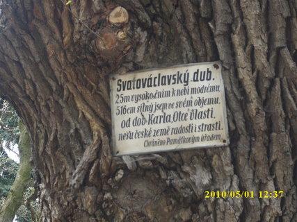 FOTKA - Památný strom