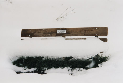 FOTKA - Saalbach-Hinterglemm 36