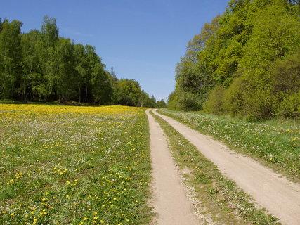 FOTKA - v okolí Chanovic taky dobré cesty na kolo :-)