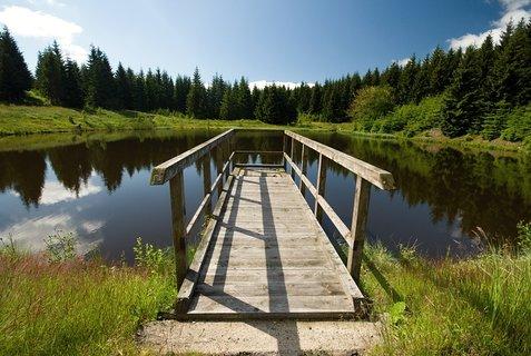 FOTKA - Hraniční rybník