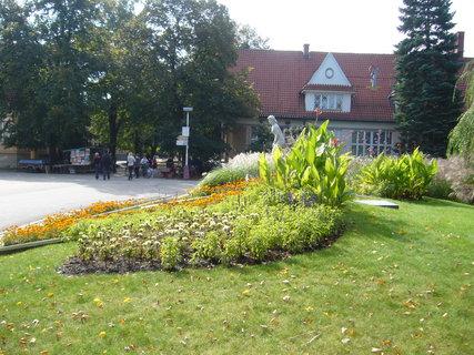 FOTKA - Lázeňský park.,,