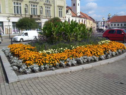FOTKA - Náměstí v Poděbradech........
