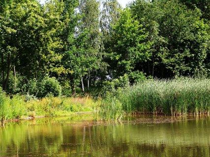 FOTKA - vyjížďka na kole 10.7.2011, rybník ve Vestci