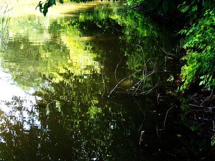 FOTKA - vyjížďka na kole 10.7.2011, hladina rybníka....