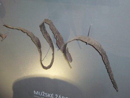 FOTKA - Polabské muzeum po rekonstrukci........