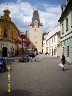 FOTKA - 2008 ..Žlutice - Kadaň