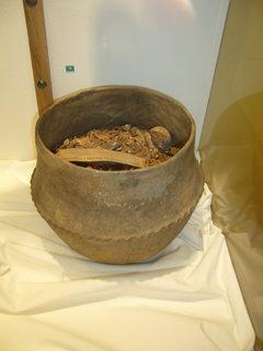 FOTKA - Polabské muzeum po rekonstrukci..,,,