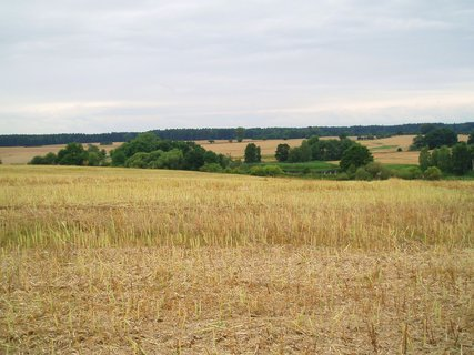 FOTKA - červencová pole