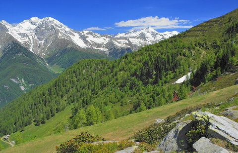 FOTKA - Příroda v Dolních Tyrolích