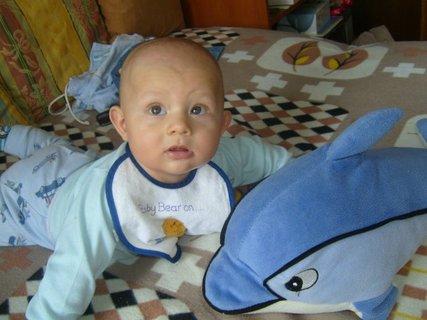 FOTKA - Synovec  - 6 měsíců.