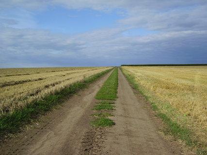 FOTKA - polní cestou...