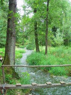 FOTKA - přes potok ..