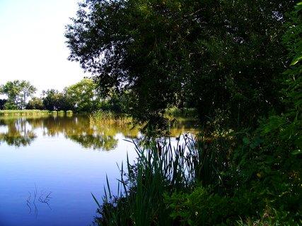 FOTKA - vyjížďka na kole 21.8.2011, Vestecký rybník