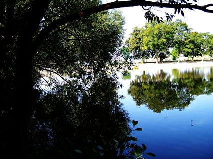 FOTKA - vyjížďka na kole 21.8.2011, rybník ve Vestci