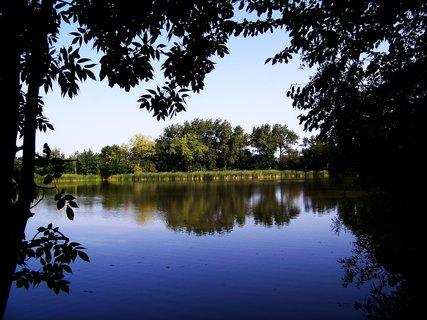 FOTKA - vyjížďka na kole 21.8.2011, rybník ve Vestci .,,