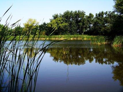 FOTKA - vyjížďka na kole 21.8.2011, Vestec - rybník