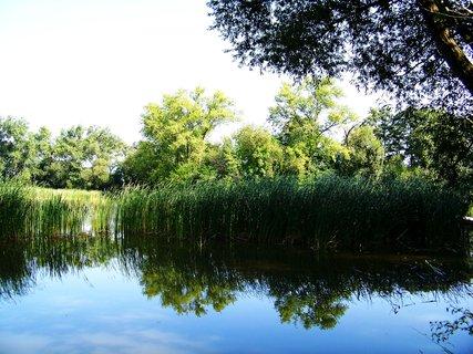 FOTKA - vyjížďka na kole 21.8.2011, zarostlý rybník