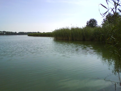 FOTKA - pohled z vyhl�dky na rybn�k