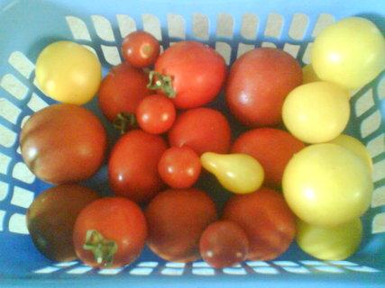 FOTKA - není nad domácí zeleninu