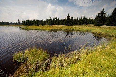 FOTKA - Novoveský rybník.