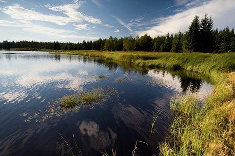 FOTKA - Starý rybník.