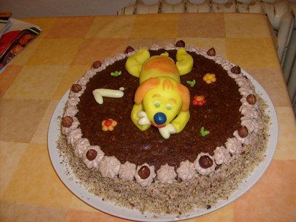 FOTKA - dort s pejskem