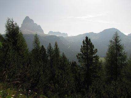 FOTKA - Záběr s horami za stromky