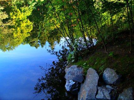 FOTKA - procházka kunratickým lesem 9.11.11, rybník