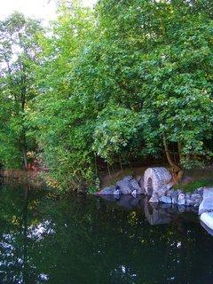 FOTKA - Dolnomlýnský rybník, nově opravená hráz