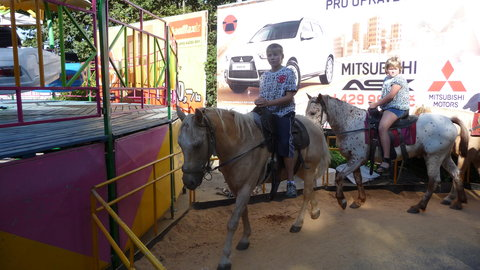FOTKA - Mates na koni